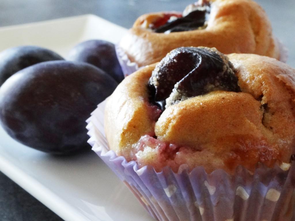 muffinsprune3