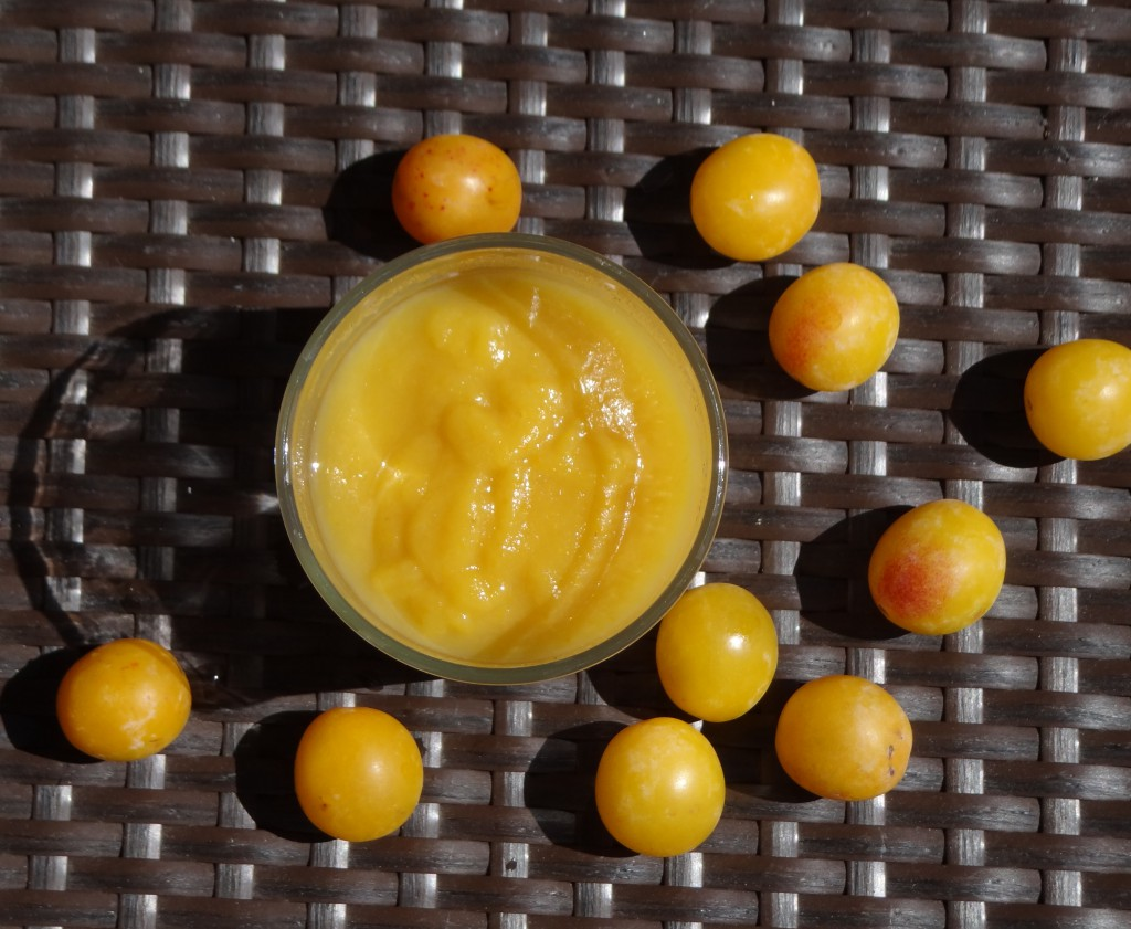 compote mirabelles